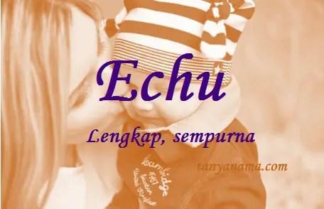 arti nama Echu