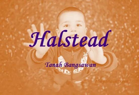 arti nama Halstead