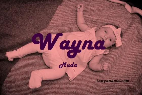 arti nama Wayna