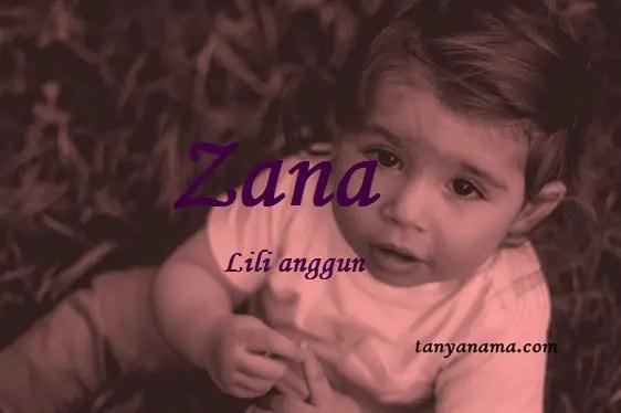 arti nama Zana