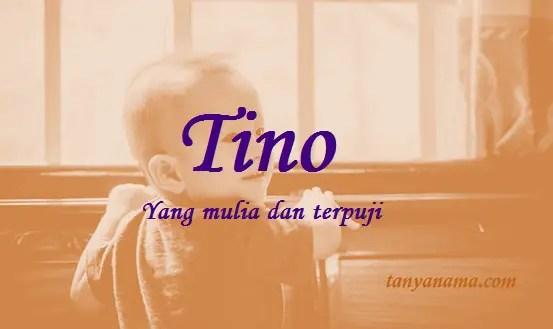 arti nama Tino