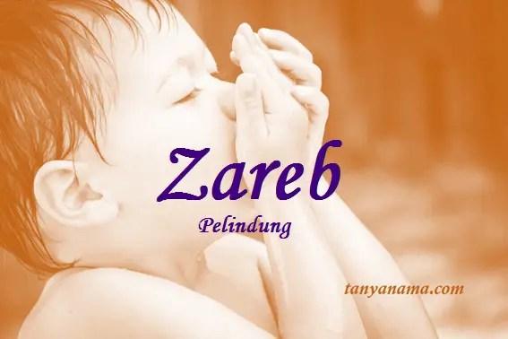 arti nama Zareb