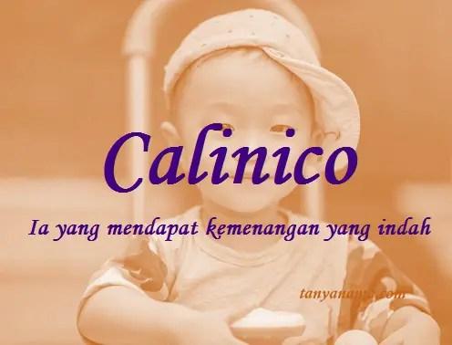 arti nama Calinico