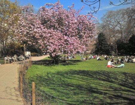 Lincoln's Inn Fields, May 2013