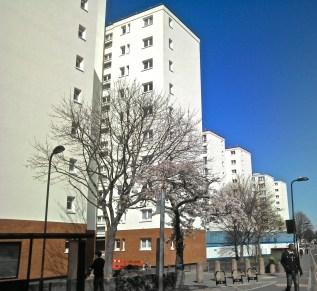 Hackney 2013