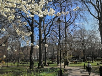 Russell Square, May 2013