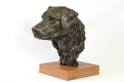 Labrador Portrait - Dog Sculpture. Sculpture portrait of a labrador by Tany Russell