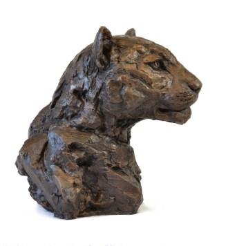 Left facing view of Leopard Portrait