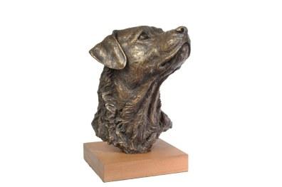 Prince, Labrador Portrait