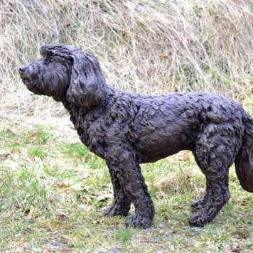 Cockerpoo - Tanya Russell Sculpture
