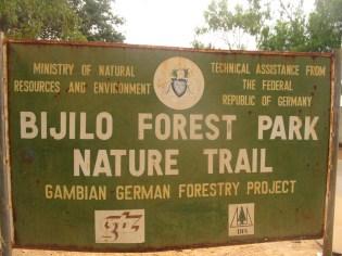 04Bijilo Forest 031
