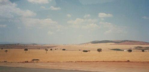6c - Plains
