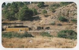 Hol 2000 - SPAIN (19)d