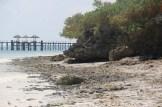 Zanzibar (669)-601 - Copy