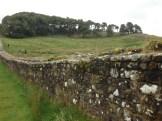 Hadrian's Wall (82)