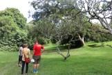 10b Entebbe Gardens (23)