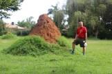 10b Entebbe Gardens (9)