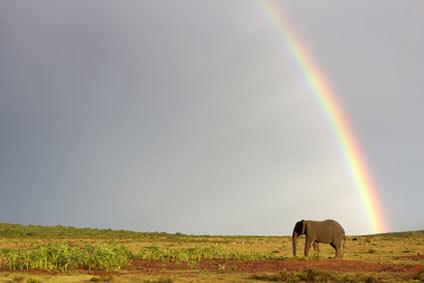 מזג אוויר בטנזניה