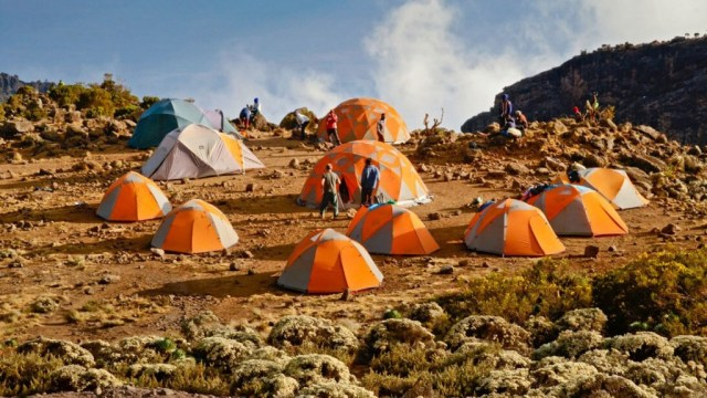 safari-and-kilimanjaro-climb