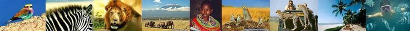 A qui acheter un safari en tanzanie