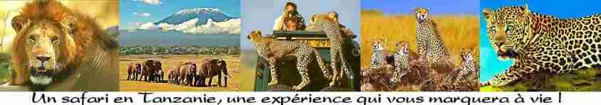 Climat en Tanzanie. Incontournables de Tanzanie. Voyage Tanzanie, présentation, guide, climat, trucs et astuces, treks, golf, safaris, pêche, grimper le Kili ou des volcans et plages de tanzanie, zanzibar