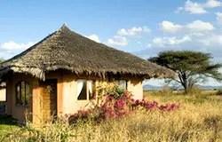 Cottage  KIA Lodge Tanzanie