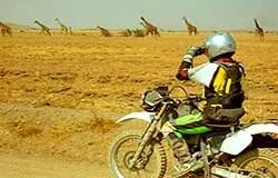 Sur la piste de Kitumbeine, Tanzanie