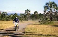 Sur la piste du Lac Natron, Tanzanie