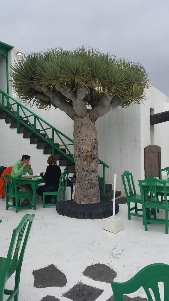 Tanzreise Lanzarote