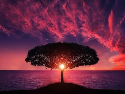 Ausgerichtet zwischen Himmel und Erde – Nachklang