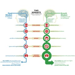 Nigel Holmes Diagram Mindset Plant Cell And Functions Graphic
