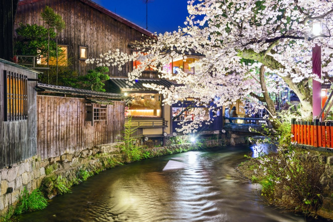 Kyoto, Japan Spring River View