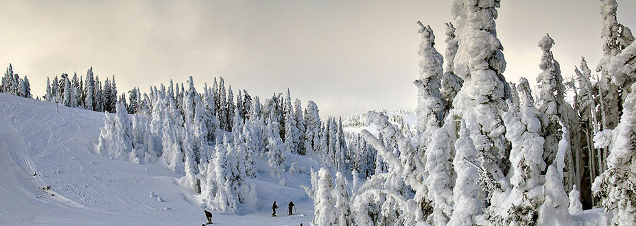 TMO-Taos-Winter-Guide
