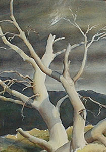 "Peter Hurd, The White Tree, Watercolor, 19"" x 13"""
