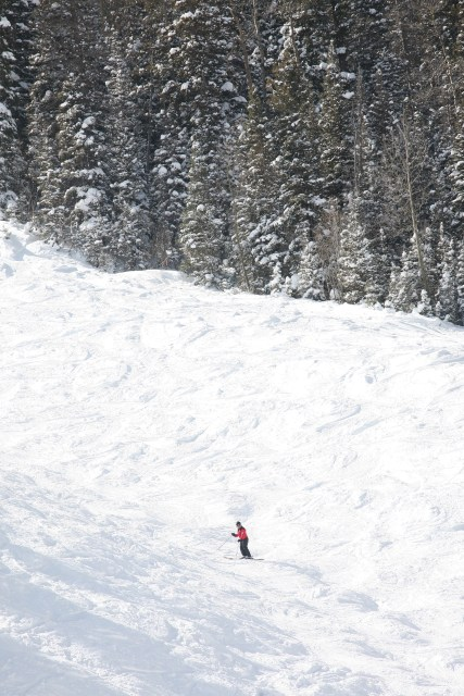 steep and deep taos mountain ski valley copy