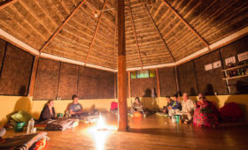 Ayahuasca retreat