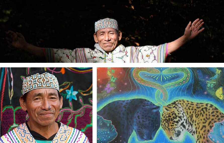 the best ayahuasca retreats