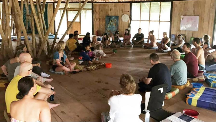 The Best Ayahuasca Retreats in Pullcapa