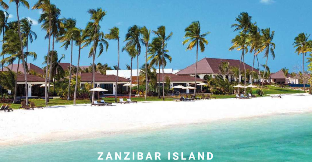 Safari Travel and Zanzibar