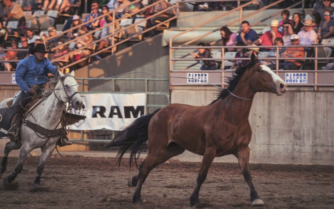 RAM Pickup Man : Clint Humble at Central Wyoming PRCA Rodeo