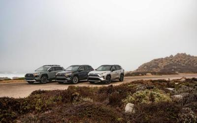All New 2019 Toyota RAV4 Specs and Trims
