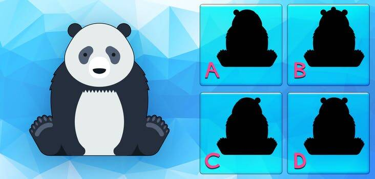 Find the Correct Silhouette Quiz Answers