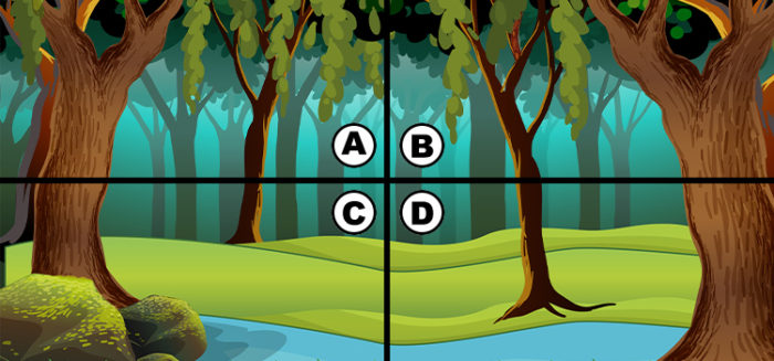 spot the snake quiz diva answers