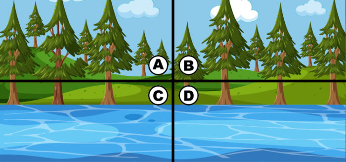 spot the 4 leaf clover answers 100 bequizzed