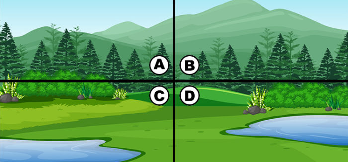 spot the deer answers bequizzed
