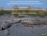 Love Letter to Believers_2014