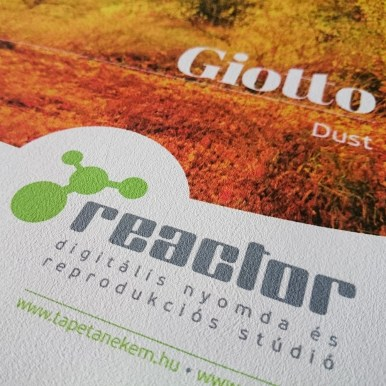 Giotto Dust