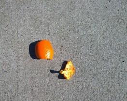 Orange fruit debris on street