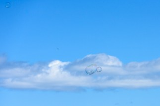 Soap bubbles floating in the sky