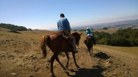 Two people on horseback heading down a trail.